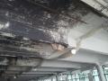 Lansdowne Garage1